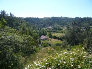 1- aldeia